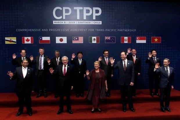 Le CPTPP stimulera la cooperation economique et commerciale Vietnam-Chili hinh anh 1