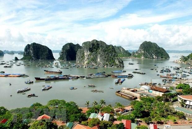 Pour mieux proteger l'environnement de la baie d'Ha Long hinh anh 1