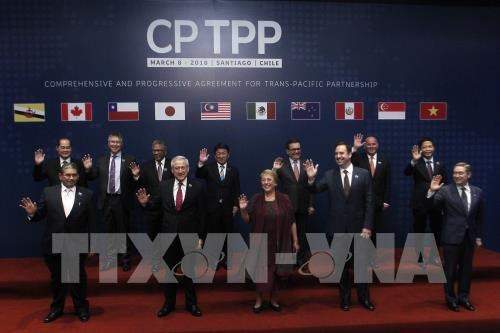Le CPTPP profitera aux pays signataires hinh anh 1