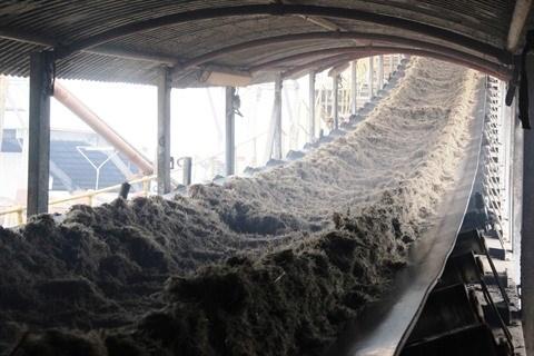 L'industrie sucriere cherche a mieux s'adapter aux enjeux d'aujourd'hui hinh anh 2