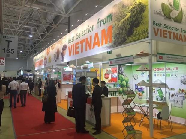 Vietnam et Russie visent un chiffre d'affaires bilateral de 10 milliards de dollars vers 2020 hinh anh 1