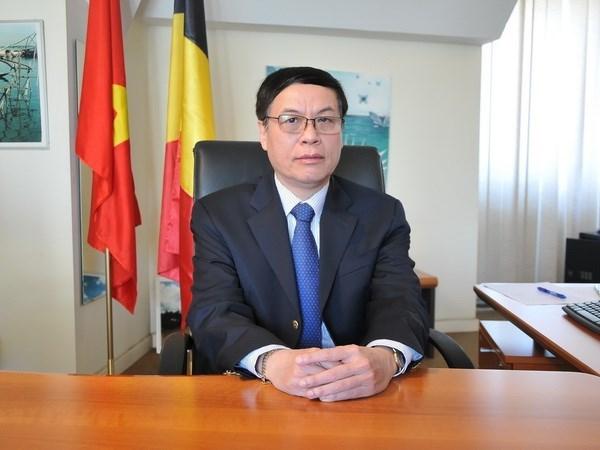 Vietnam-Belgique: Porter les relations bilaterales a une nouvelle hauteur hinh anh 1