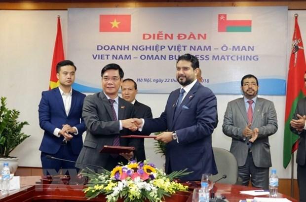 Les entreprises omanaises en quete d'opportunites au Vietnam hinh anh 1
