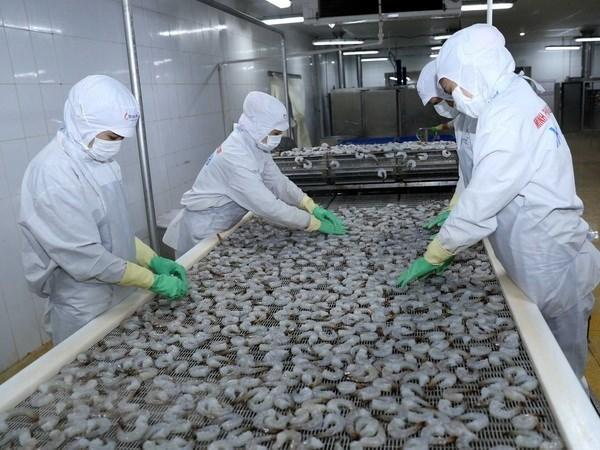 Le Vietnam est determine au developpement durable des produits aquatiques hinh anh 1
