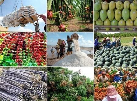 Les exportations de produits agricole, sylvicole et aquatique se chiffrent a 8,7 milliards d'USD hinh anh 1