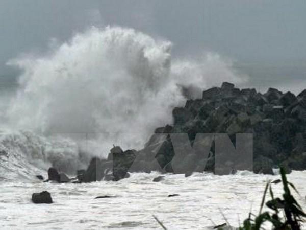 Le PNUD et le Japon aident les ecoliers du Vietnam a mieux faire face aux catastrophes naturelles hinh anh 1
