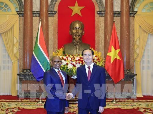 Le president Tran Dai Quang recoit les ambassadeurs sud-africain et egyptien hinh anh 1