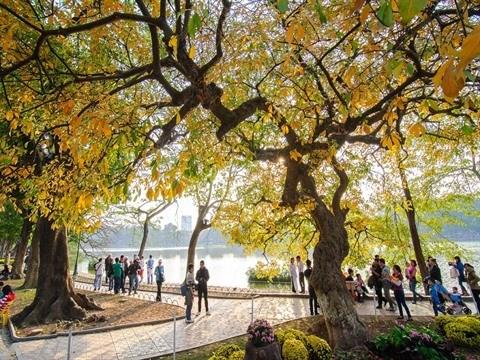 La Foire internationale du tourisme du Vietnam 2018 attire 60.000 visiteurs hinh anh 1
