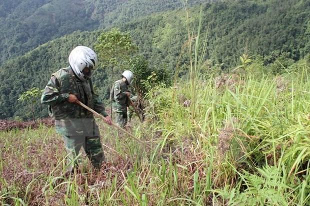 Le Vietnam fait echo a la Journee internationale pour la sensibilisation aux mines hinh anh 1