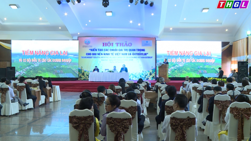 Creation de chaines de valeur a deux economies Vietnam-Australie a Gia Lai hinh anh 1