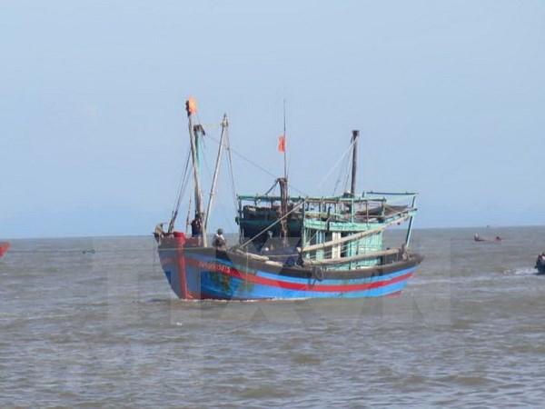 Des bateaux de peche de Quang Binh sont dotes d'equipements HF hinh anh 1