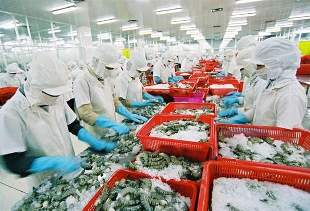 Crevettes fraiches entieres: de belles opportunites d'exportation en Australie hinh anh 1