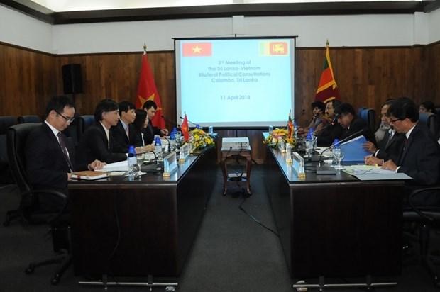 Le Vietnam et le Sri Lanka organisent leurs 3es consultations politiques hinh anh 1