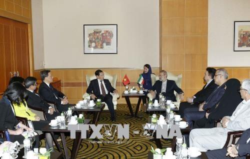 Promotion des relations d'amitie et de cooperation Vietnam-Iran hinh anh 1
