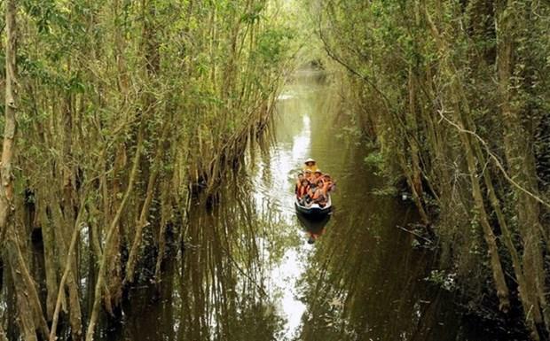 Seminaire international sur la vision touristique du delta du Mekong hinh anh 1