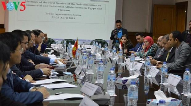 Le Vietnam et l'Egypte renforcent leur cooperation commerciale hinh anh 1