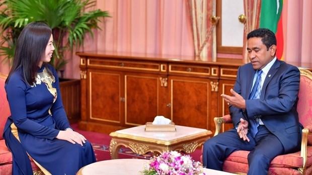 Vers un bel essor des relations Vietnam - Maldives hinh anh 1