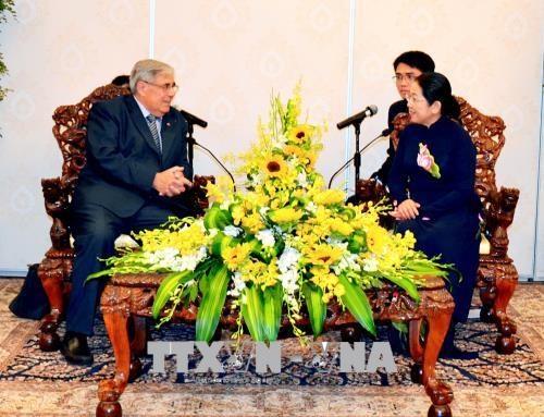 Renforcement de la cooperation entre Ho Chi Minh-Ville et des localites francaises hinh anh 1