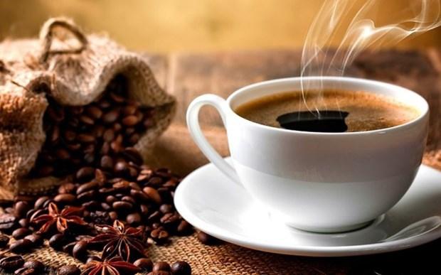 1er trimestre: la valeur a l'export du cafe franchit la barre du milliard de dollars hinh anh 1