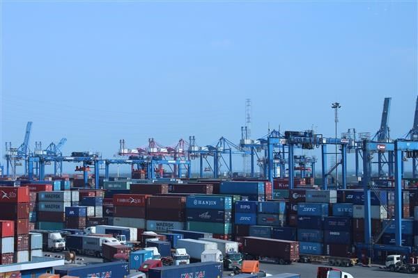 Forte croissance des exportations nationales de noix de cajou hinh anh 1