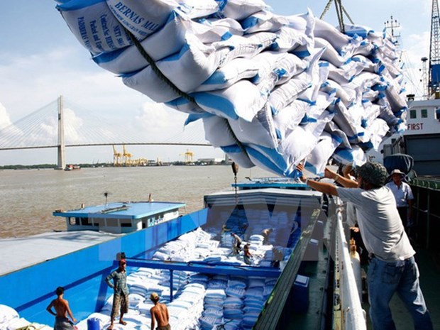Exportations nationales de riz en hausse tant en volume qu'en valeur hinh anh 1
