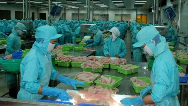 Vers une exportation durable des produits agricole, sylvicole et aquatique hinh anh 1