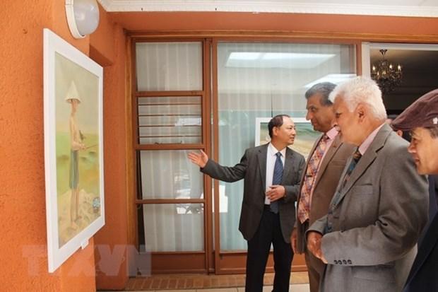 Exposition de peintures sur les mers vietnamiennes en Afrique du Sud hinh anh 1