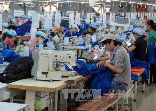 Textile-habillement : promotion des exportations en Australie hinh anh 1