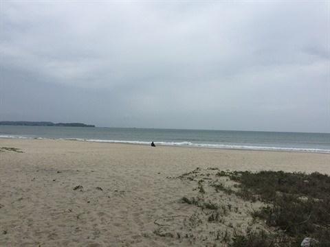 La plage de My Khe, une destination ideale pour se ressourcer hinh anh 1