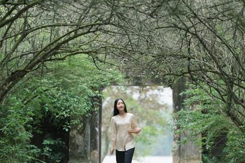 Des films sur la culture de Hue, fruit d'une cooperation vietnamo-sud-coreenne hinh anh 1