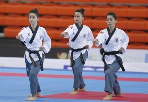 Ouverture des tournois de taekwondo d'Asie a Ho Chi Minh-Ville hinh anh 1