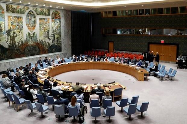 Le Vietnam, seul candidat de l'Asie-Pacifique pour un siege non permanent au Conseil de securite hinh anh 1