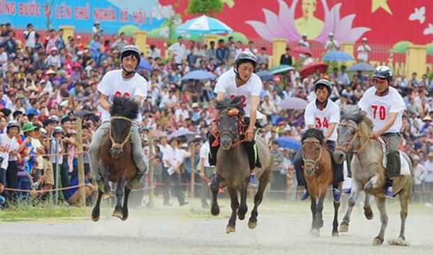 Rendez-vous en juin sur le plateau de Bac Ha (Lao Cai) hinh anh 1