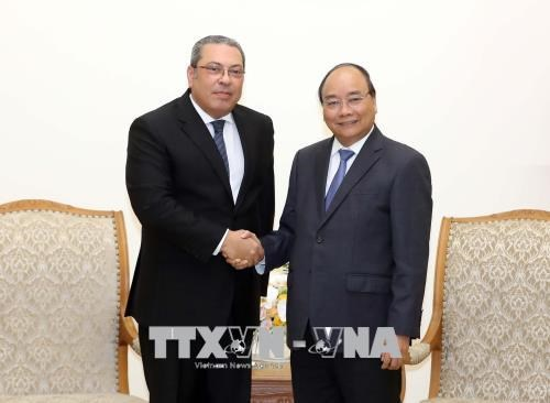 Le Vietnam souhaite stimuler la cooperation avec l'Egypte dans l'agriculture hinh anh 1