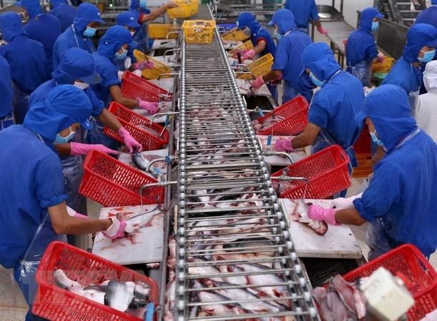 Hausse de 10% des exportations des produits aquatiques hinh anh 1