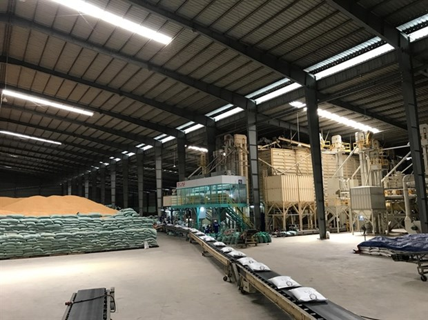 Le Vietnam exportera 50.000 tonnes de riz Japonica en Republique de Coree hinh anh 1