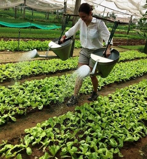 Le potentiel du tourisme agricole hinh anh 2