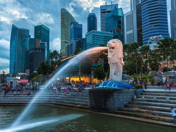 L'Inde et Singapour construisent un ''partenariat dans l'air du temps'' hinh anh 1