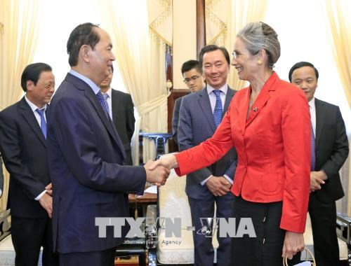 Le president Tran Dai Quang recoit l'ambassadrice neerlandaise ​ hinh anh 1