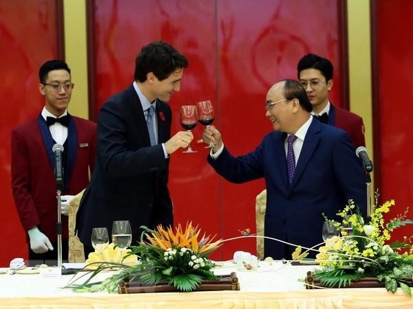 D'importants potentiels et perspectives dans la relation Vietnam-Canada hinh anh 1