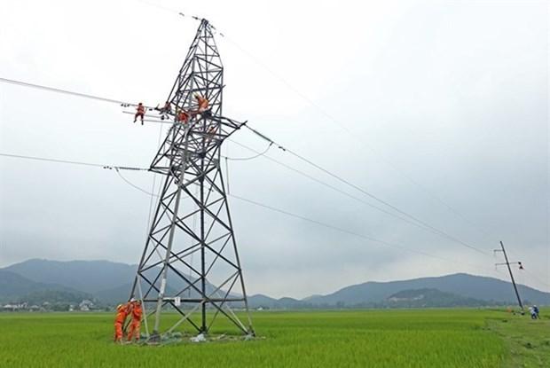Des progres notables dans l'electrification des zones rurales hinh anh 1
