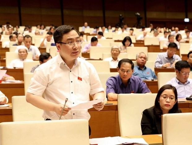 L'Assemblee nationale devrait adopter trois lois le 12 juin hinh anh 1