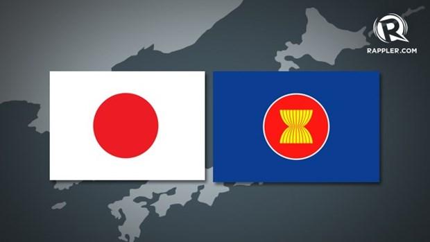 Le Japon soutient le role central de l'ASEAN dans la region hinh anh 1