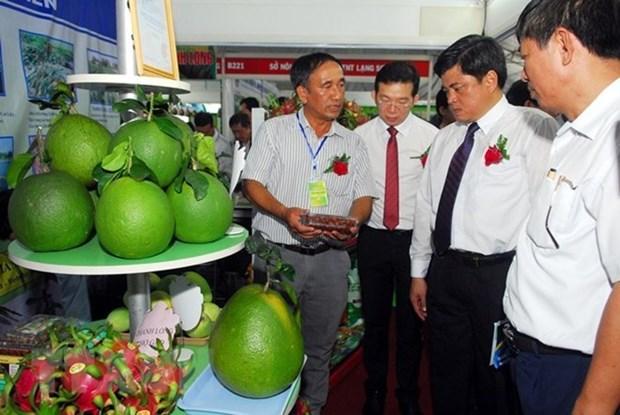 La foire internationale de l'agriculture 2018 se deroulera fin juin a Da Nang hinh anh 1