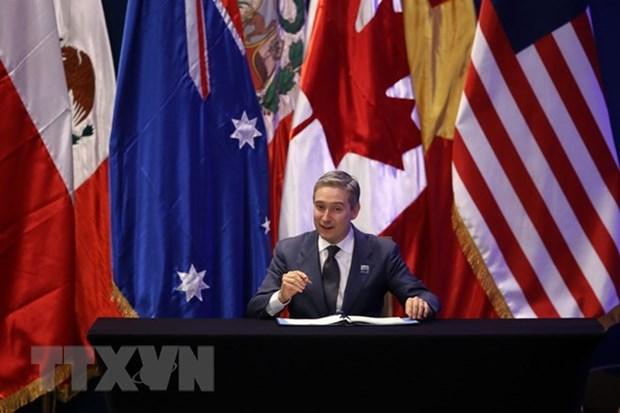 Le Canada demarre le processus de ratification du CPTPP hinh anh 1