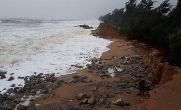 Thua Thien-Hue ameliore sa capacite d'adaptation au changement climatique avec l'aide de Luxembourg hinh anh 1