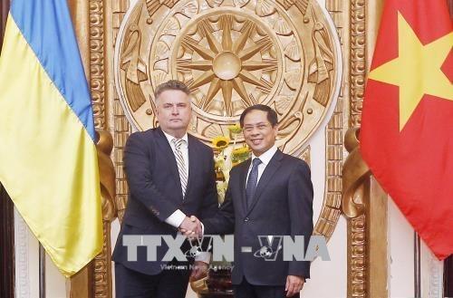 Vietnam-Ukraine : consultation politique au niveau vice-ministeriel hinh anh 1