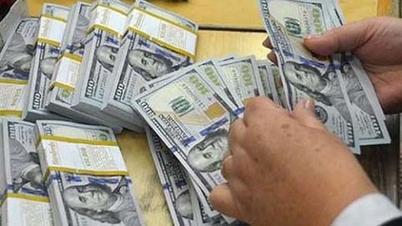 HCM-V : 2,45 milliards de dollars de devises etrangeres au 1er semestre hinh anh 1