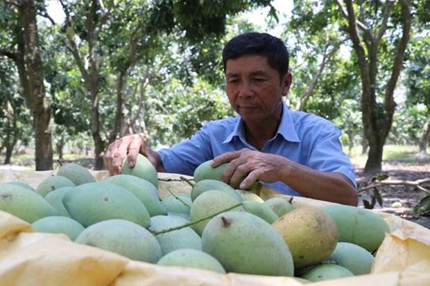 Le Vietnam exhorte les entreprises suisses a investir dans l'agriculture hinh anh 1