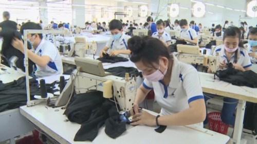 Exportations: Tien Giang realise un chiffre d'affaires de 1,27 milliard de dollars hinh anh 1
